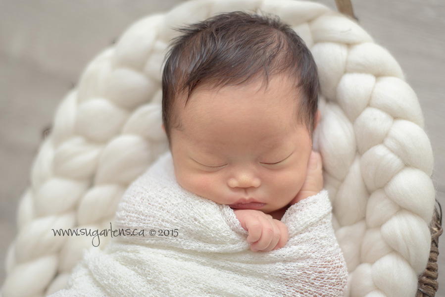 newmarket newborn photography